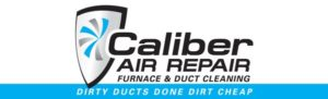 dirty ducts done dirt cheap